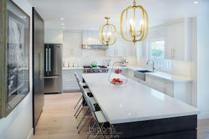 Apollo white with gold hardware transitional kitchen 02