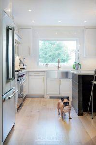 Apollo white with gold hardware transitional kitchen 03